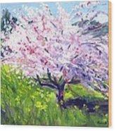 Spring Glory Wood Print by Karin  Leonard