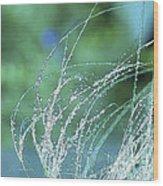 Spring Grass Wood Print