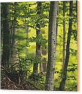 Spring Green Vertical Forest  Wood Print