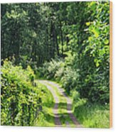 Spring Hikes Wood Print