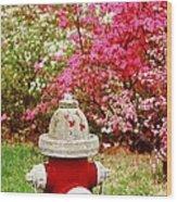 Spring Hydrant Wood Print