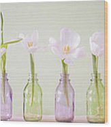 Spring In A Bottle Wood Print