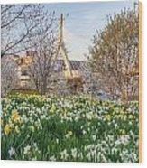 Spring In Boston Wood Print
