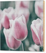 Spring In Love Wood Print by Angela Doelling AD DESIGN Photo and PhotoArt