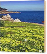 Spring In Pacific Grove Ca Wood Print