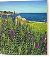 Spring In Pacific Grove Ca Two Wood Print