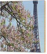 Spring In Paris Wood Print