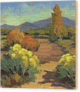 Spring In Santa Fe Wood Print