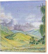 Spring In The Corona Hills Wood Print