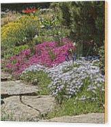 Spring In The Garden Dsc03678 Wood Print