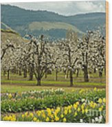 Spring In The Hood River Valley Wood Print
