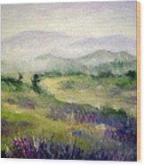 Mountain Spring Iv Wood Print