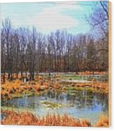 Spring Is In The Air Wood Print by Sheila Werth
