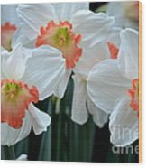 Spring Jonquils Wood Print