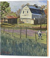 Spring Lake Smiling Barn Wood Print by Jeff Brimley
