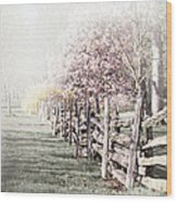 Spring Landscape With Fence Wood Print
