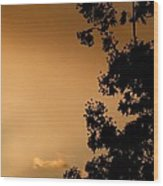 Spring Maple Silhouette Wood Print