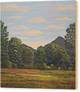 Spring Meadow At Sutter Buttes Wood Print