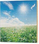 Spring Meadow Under Sunny Blue Sky Wood Print
