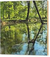 Spring Mill Reflections Wood Print