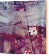 Spring-mirror Wood Print by Dorothy Rafferty
