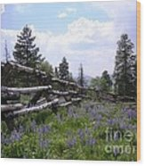 Spring Mountain Lupines 2 Wood Print