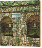 Spring Near Shrine To Mary-meryem Ana Evi-turkey Wood Print