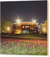 Spring Night In Belgrade Wood Print