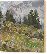 Spring On A Northern Slope Wood Print