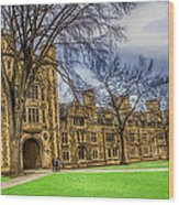 Spring On The Law Quad Wood Print