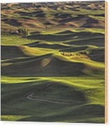 Spring On The Palouse Wood Print