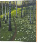 Spring Path Wood Print