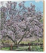 Spring Picnic Wood Print