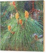 Spring Pine Wood Print