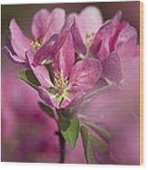 Spring Pink... Wood Print