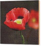 Spring Poppies Wood Print
