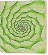 Spring Portal Wood Print