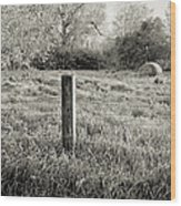 Spring Post And Bale In Black N White Wood Print by Tracy Salava
