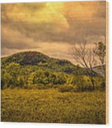 Spring Rain - White Mountains -maine Wood Print