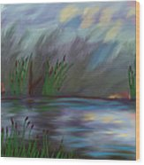 Spring Reed In The Canyon Wood Print