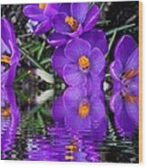 Spring Reflection Wood Print