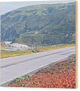 Spring, Route 1, California Coast Wood Print