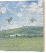 Spring Sky Bembridge Down Wood Print by Alan Daysh