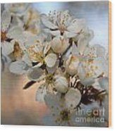 Spring Smells Of Cherries Wood Print