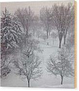 Spring Snow Wood Print by Emily Clingman