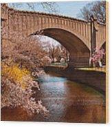 Spring - Springtime In Newark Wood Print