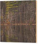 Spring Stillness Wood Print