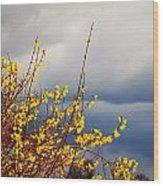 Spring Storm Wood Print