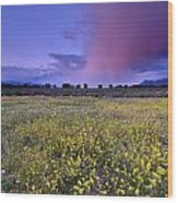 Spring Storm At Andalucia Wood Print