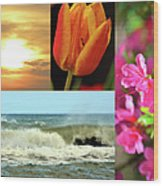 Spring Summer Collage Wood Print